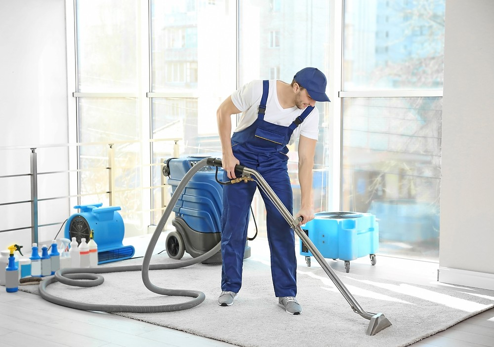 What do carpet cleaning services offer?